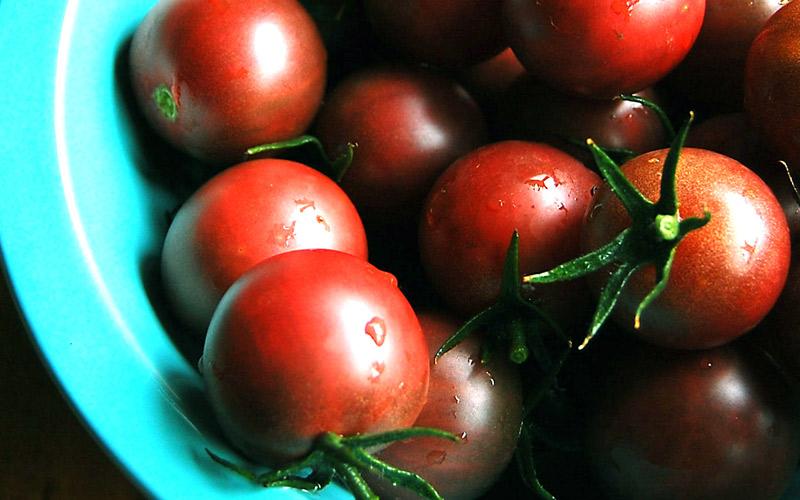 tomatensamen selbst angebaute tomaten schmecken besser. Black Bedroom Furniture Sets. Home Design Ideas